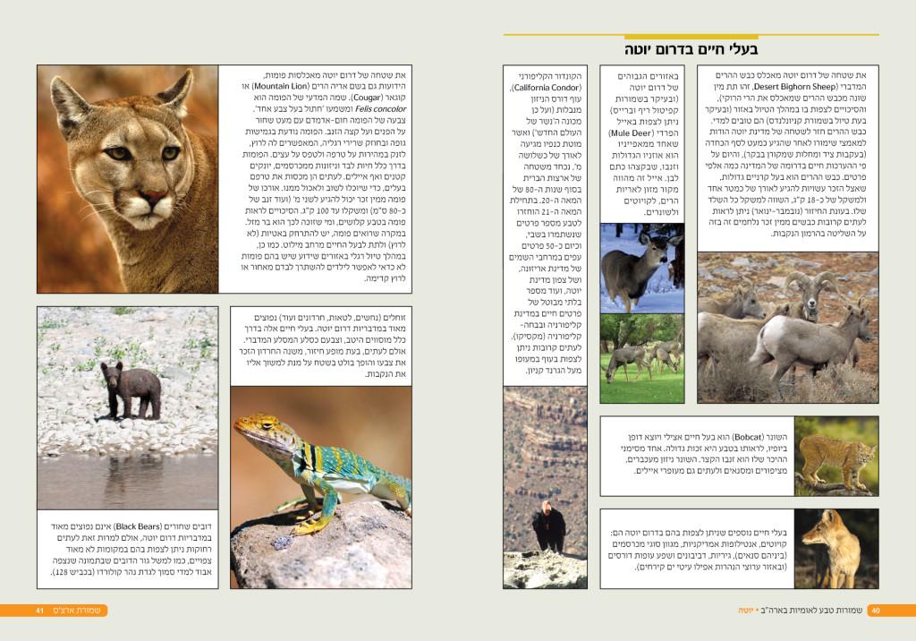 """ספרי הדרכה לטיול בארה""""ב - בוקסה בעלי חיים"""