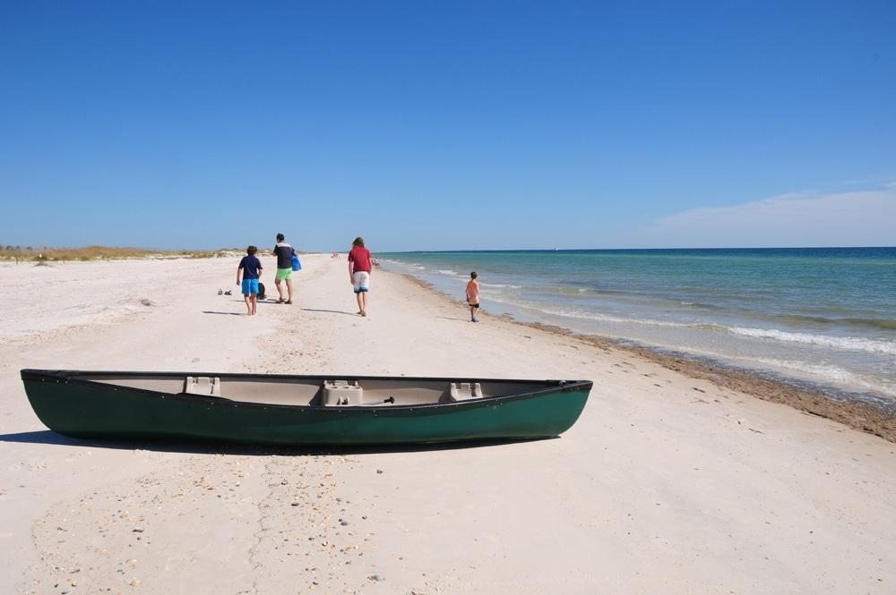 צילומי טבע - חופי מפרץ מקסיקו בפלורידה