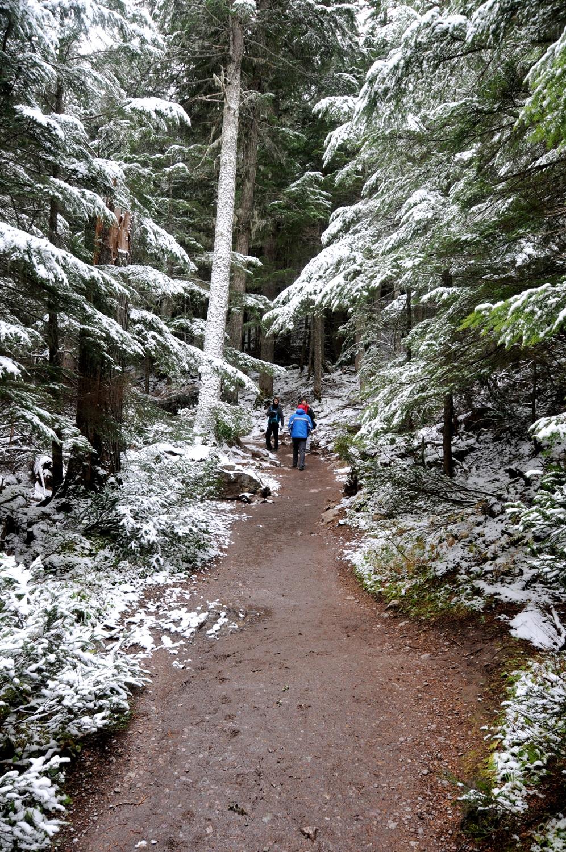 רוד טריפ בהרי הרוקי ובגליישר גליישר