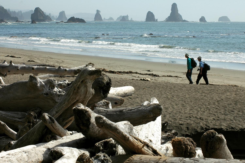 פארק אולימפיק החוף
